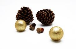 Cono y bellota del pino con el ornamento de la bola del oro en el fondo blanco Imagen de archivo libre de regalías
