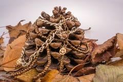 Cono y cadena del pino en fondo marrón Foto de archivo