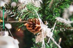 Cono y luces del pino en el árbol de navidad Imagenes de archivo