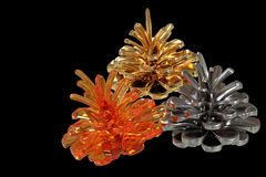 Conos coloreados del pino Imagen de archivo libre de regalías