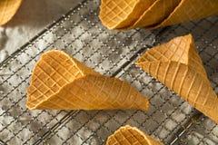 Conos de helado hechos en casa crujientes de la galleta Fotografía de archivo libre de regalías