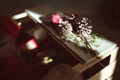 Conos de la decoración de la Navidad en luces Imágenes de archivo libres de regalías