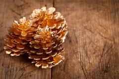Conos de oro del pino Imágenes de archivo libres de regalías