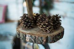 Conos del cedro en la rebanada de madera, Foto de archivo