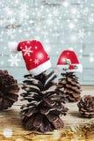 Conos del pino con los sombreros de la Navidad Fotografía de archivo libre de regalías