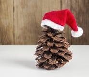 Conos del pino con los sombreros de la Navidad Imágenes de archivo libres de regalías
