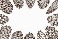 Conos del pino de la Navidad stock de ilustración