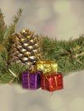 Conos del pino de la Navidad Fotografía de archivo libre de regalías