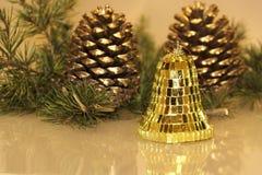 Conos del pino de la Navidad Fotos de archivo libres de regalías