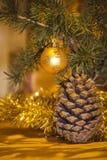 Conos del pino de la Navidad Fotografía de archivo