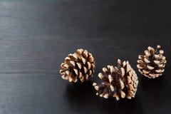 Conos del pino en fondo de madera negro Foto de archivo