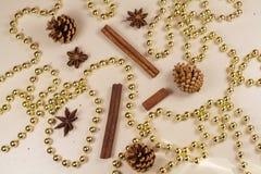 Conos del pino, palillos de canela, anís de estrella y malla de la perla Imágenes de archivo libres de regalías