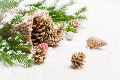 Conos en un bolso Despido y nieve en un fondo blanco Fondo del Año Nuevo y de la Navidad Fotos de archivo