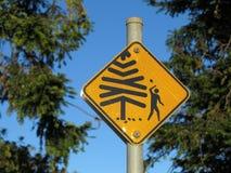 Conos que caen de la señal de peligro del árbol Imagen de archivo libre de regalías