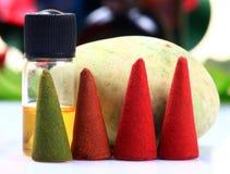 Conos y petróleo aromáticos del fango Foto de archivo