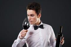 Conoscitore di vino Immagini Stock