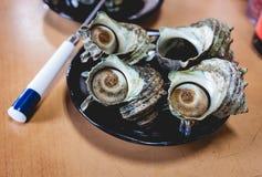 Conque japonaise dans un plat Photos libres de droits