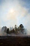 Conséquence d'un incendie prescrit Photographie stock libre de droits