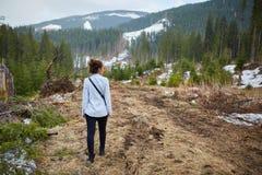 Consecuencias de la tala de árboles de la mujer que atestiguan Imágenes de archivo libres de regalías