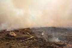 Consecuencias de una quemadura controlada Fotografía de archivo libre de regalías