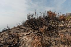 Consecuencias del fuego de Woolsey en el EL Matador State Beach en Malibu imagenes de archivo