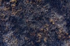 Consecuencias que dejan el fuego después de hierba ardiente foto de archivo