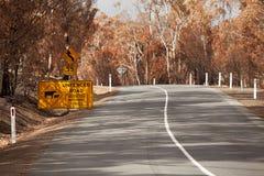 Consecuencias Tasmania del fuego Imagen de archivo libre de regalías