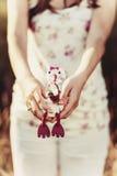 Consegna del bambino da una cicogna bianca Giocattolo della tenuta della donna incinta Fotografie Stock Libere da Diritti