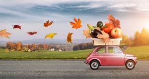 Consegna dell'alimento di autunno Immagine Stock Libera da Diritti