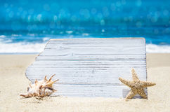 Conseil en bois blanc avec le coquillage et étoiles de mer sur la plage sablonneuse Image libre de droits