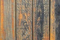 Conseil orange Photo stock