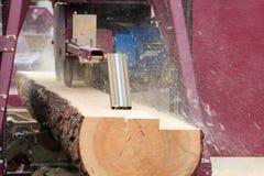 Conseils de sawing des rondins Photographie stock