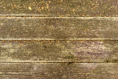 Conseils humides sur le plancher Photographie stock