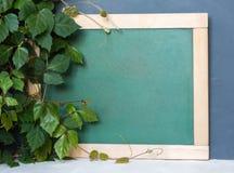 Consejo escolar, hojas del verde Principio del año escolar 1 de septiembre, estudio, entrenamiento, escuela Fotos de archivo libres de regalías