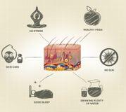 Conselhos saudáveis dos cuidados com a pele ilustração royalty free