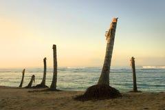 Consequências do tsunami Fotos de Stock