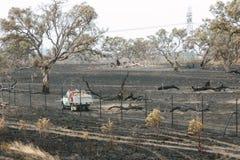 Consequências dos Bushfires de Epping Fotos de Stock Royalty Free