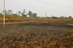 CONSEQUENCE OF BRASS LIGHTS. Sad face of an aficain village half destroyed by the bush fires probably light in the forest by the man to clear the land or to hunt royalty free stock image