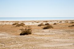 Consequences of Aral sea catastrophe. Sandy salt desert on the place of former bottom of Aral sea.  Royalty Free Stock Images