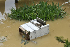 The consequences of flooding, flooded destroyed bee hive. stock photography