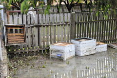 The consequences of flooding, flooded destroyed bee hives. royalty free stock photography