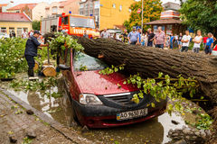 The consequences of the hurricane in Uzhgorod Royalty Free Stock Photography