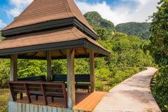 Conservação e turista da floresta de Tha Pom Klong Song Nam Mangrove foto de stock royalty free