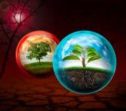 Conservação natural Fotografia de Stock