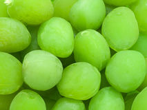 Conserva do fruto do pêssego Foto de Stock