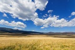 Conserva nacional do Caldera de Valles fotografia de stock