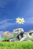 Conservación ambiental Foto de archivo libre de regalías