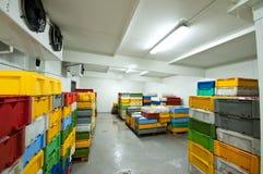 Conservación en cámara frigorífica Fotos de archivo