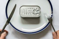 Conservas alimentares para a refeição fotografia de stock