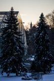 Conservatório coberto de neve de Krohn - Eden Park - Cincinnati, Ohio imagens de stock royalty free